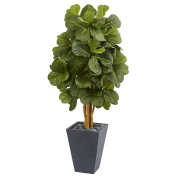 5.5' Fiddle Leaf Artificial Tree in Slate Planter