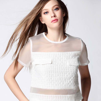 White Mesh Organza Top and Short