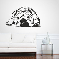 Wall Decal Vinyl Sticker Decals Art Decor Design English Bulldog Dogs Puppy Pets Animals Friend Nature Dorm Bedroom House Style(r 336)