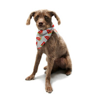 "Sreetama Ray ""Summer Fun"" Watermelon Pet Bandana"