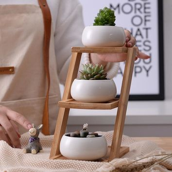 Modern Minimalist White Ceramic Succulent Plant Pot 3 with 3-Tier Bamboo Shelf