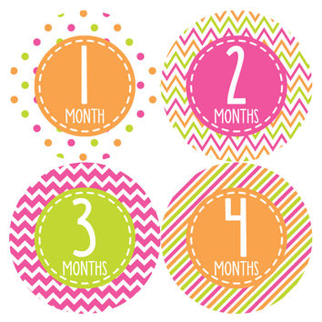 Baby Girl Monthly Baby Stickers Style #364