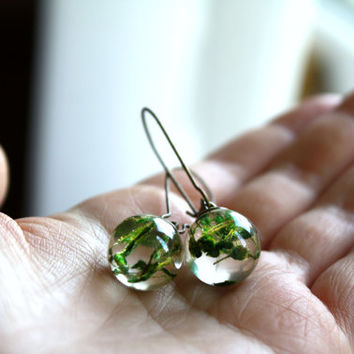 Real Flower Resin Orb Earrings. Resin Sphere Ball Globe Earrings with green dried flowers.