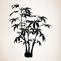 Vinyl Wall Decal Sticker Maple Bonsai #AC214