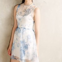 Giacinta Dress by Cameo Blue Motif