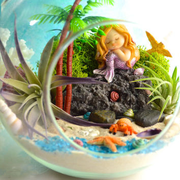 "Mermaid Beach Terrarium Kit ~ 2 Air Plants ~ Beach Decor ~ Mermaid on a Rock  ~ 7"" Terrarium ~ Sits or Hangs ~ Animal choice ~ Gift idea"