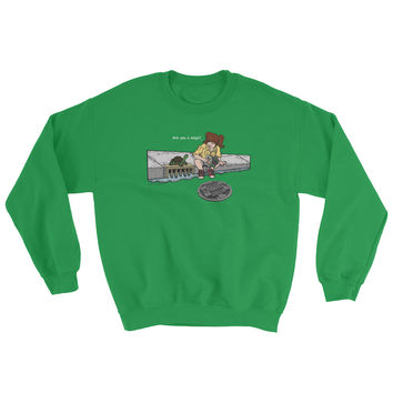 April in New York TMNT Are You a Ninja? Sewer Turtle Sweatshirt