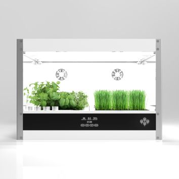 Homefarm: the ultimate in home cultivation