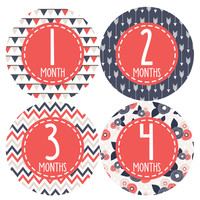 Baby Girl Monthly Baby Stickers Style #365