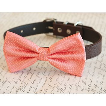 Coral dog Bow tie attached to collar, Pet wedding, Coral wedding