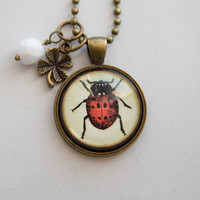 Ladybug Necklace - Insect Pendant - Coccinellidae - Red Lady Bug Jewelry - Nature Lover - Biology Science Entomologist Gift for Teacher