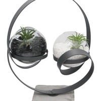 Abstract Yin Yang Zen Terrarium