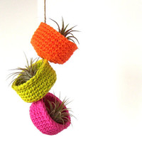 Spring Neons - Hanging Air Plant Trio in Colorful Cotton Bowl Planters