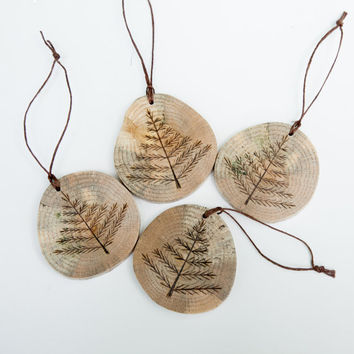 Wood burned pine tree ornament on spalted oak. Double sided rustic wooden christmas ornament.