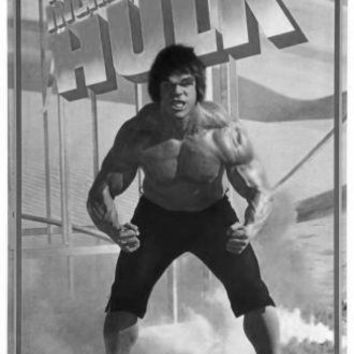 Incredible Hulk The Poster Standup 4inx6in black and white