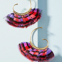 Abuzios Feather Hoops