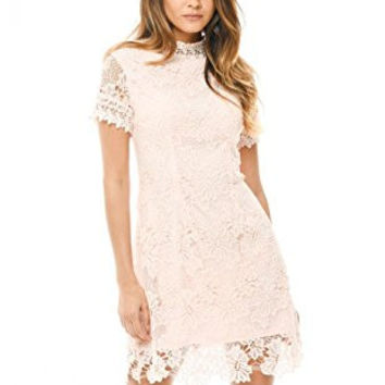 Blush High Neck Short Sleeve Lace Mini Dress