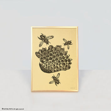 Bee print-bee gold print-bee wall art-home decor-print-office decor-nature print-insect print-wildlife print-gold print-NATURA PICTA-NPGP012
