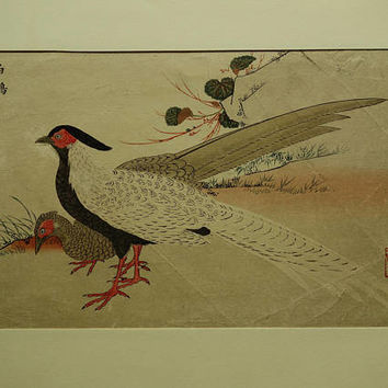 JAPANESE antique print Masayoshi original Hakukan White Pheasant Japan Decor gifts Kaihaku Raikin Zui vintage prints