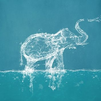The Water Elephant Art Print by Paula Belle Flores
