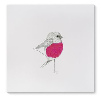 PINK ROBIN Canvas Art By Birds Doing Yoga