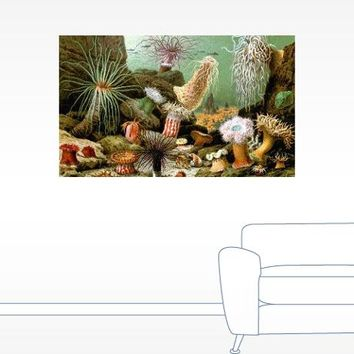 Vintage Sea Corals Painting Wall Decal
