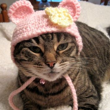 Pet Hat Flower Bear BeanieCat Hat  Pink Yellow by Monarchdancer