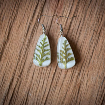 "Earrings ""branch of cypress in resin jewelry"""