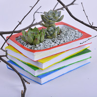 Creative Books Cactus Succulent Planter Pot Container Gardens
