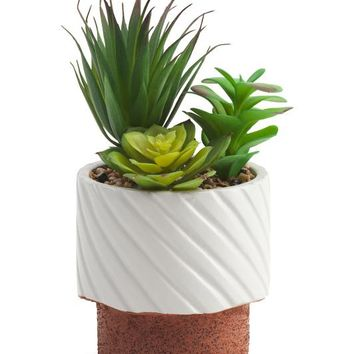 Luxury Brand Potted Faux Succulent Mix