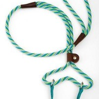 "Mendota Dog Walker Lead & Collar 3/8"" x 6' Seafoam"