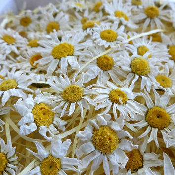 Dried Daisies, White Daisy, Real Flowers, Whole Flowers, Reception, Fairy, Wedding Confetti, Confetti, Petal, Daisy, Table Decor, Decoration