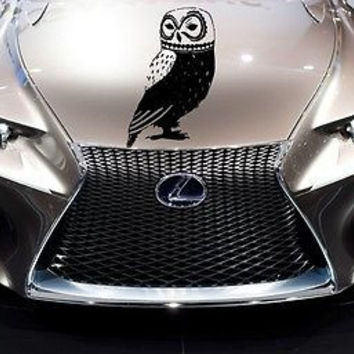 Best Owl Car Decal Products On Wanelo - Lexus custom vinyl decals for car