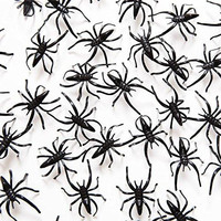 "1 1/2"" Plastic Spiders, 72 Pack"