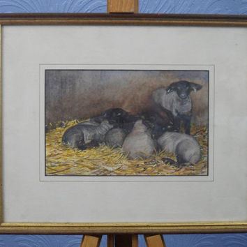 Lambs in stable. A watercolour painting by English artist Chris Jefferies. Charming painting for home decor