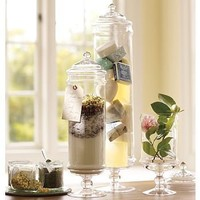 PB Classic Glass Apothecary Jar | Pottery Barn