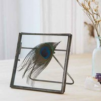 Glass Display Picture Frame - Silver One