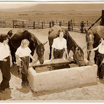 Vintage Horse Photo, Horse Trough, Colorado Photo, San Luis Ranch Camp, Colorado Springs Photo, Stewart's Commercial Photographers, Sepia