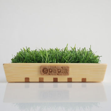 Soap dish, wood and grass, handmade, design, vegan, home decor, wood, mothers day gift