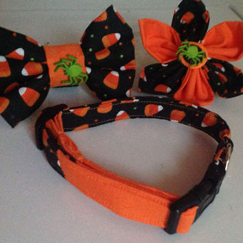 Orange & Black Halloween Candy Corn Collar for Dogs and Cats