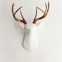 Faux Taxidermied - The Lydia- White W/ Bronze Metallic Antlers Resin Deer Head- Stag Resin White Faux Taxidermy- Chic & Trendy