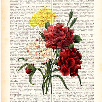 Wall art Vintage Illustration Carnations bouquet  collage Print on Vintage Book page- Home wall decor