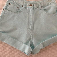 Tiffany Blue High Waisted Shorts -waist 29""