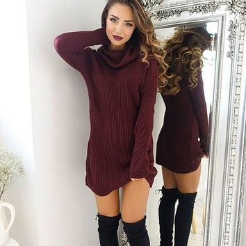 Fashion Winter Spring Warm Turtleneck Sweaters Dress +Free Christmas Gift -Random Necklace
