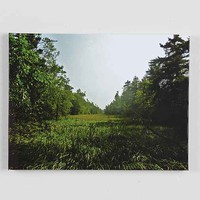 Mat Daly Faraway Places #14 Stretched Canvas Print- Multi One