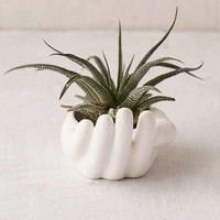 Hand Ashtray - Urban Outfitters