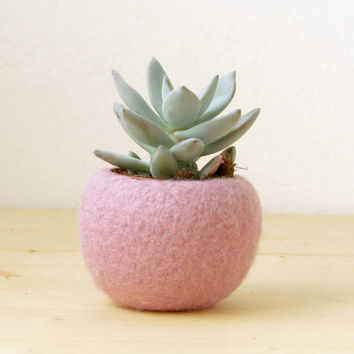 Felt succulent planter / felted bowl / Mini flower vase vase / pink for spring / Easter decor