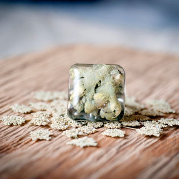 Square ring adjustable size gray green lichen forest immersed in epoxy resin jewelry.
