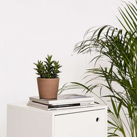 Stan Small Storage Night Stand - Urban Outfitters
