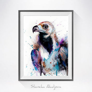 Original Watercolour Painting- Vulture art, animal, illustration, animal watercolor, animals paintings, animals, portrait,